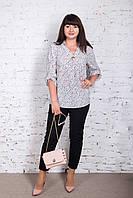 Удлиненная женская блуза больших размеров весна-лето 2018 - Горох - (код бл-172), фото 1