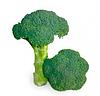 Семена капусты брокколи KS 355 F1 2500 семян Kitano