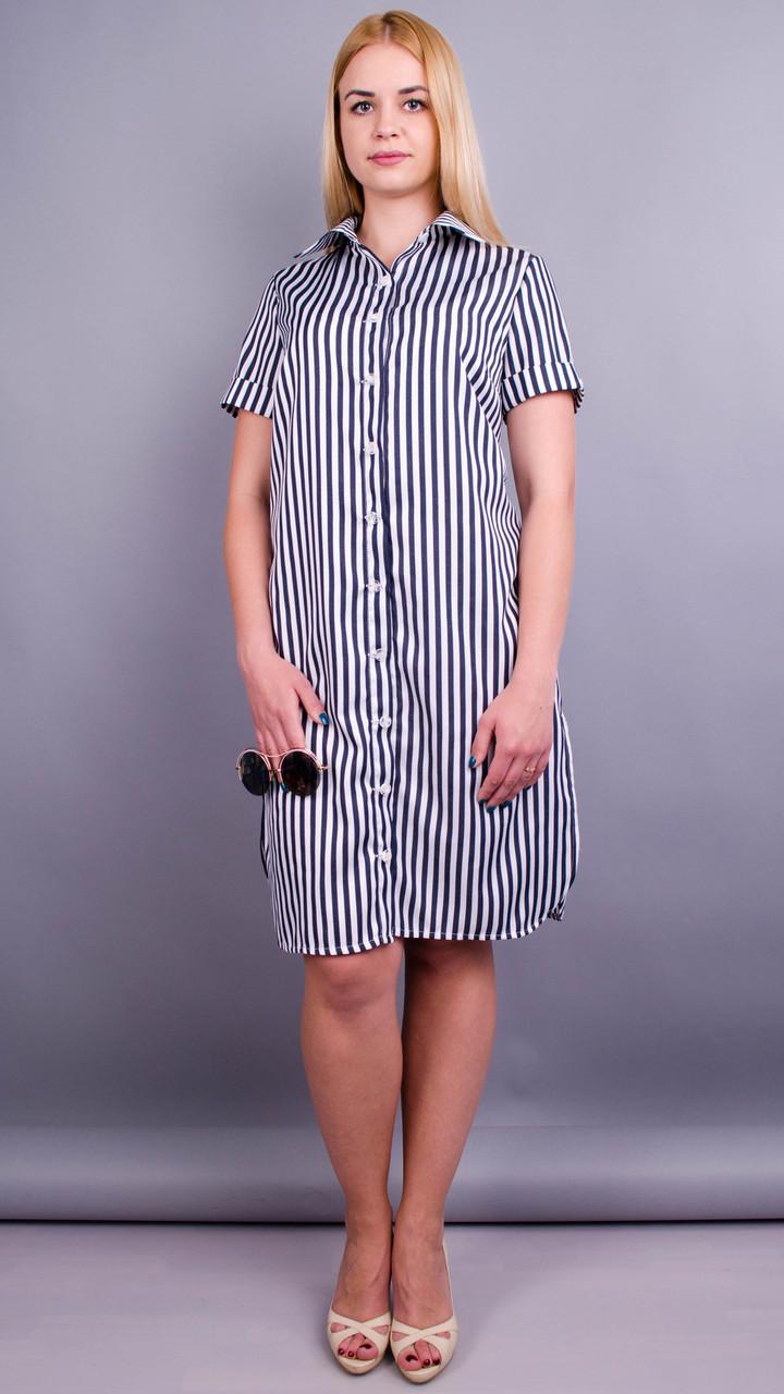 Ірина. Стильна сукня-сорочка великих розмірів полоска синя50 52 54 56 58 60  62 b9fb573ead49b