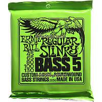 Струны Ernie Ball 2836 Regular Bass 5-String 45-130, фото 1
