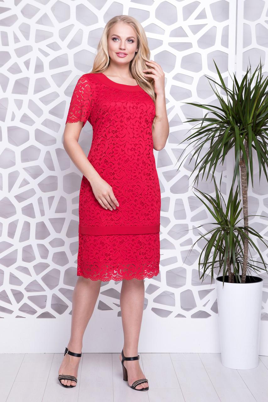 a213fedb638 Нарядное красное гипюровое платье больших размеров - оптово - розничный  интернет - магазин