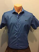 Рубашка с коротким рукавом для мужчины S,M,L