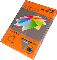 Папір кольоровий 80г/м, А4 100арк. SPECTRA COLOR IT 240 Saffron (Інтенсивний помаранчевий)