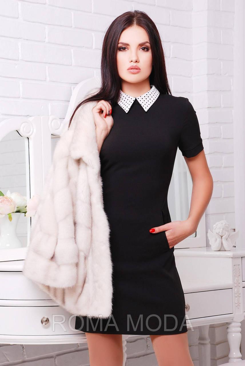 Платье с белым воротом Ласточка