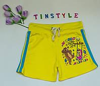 Трикотажные  шортики  Маша для девочки 8-11 лет, фото 1