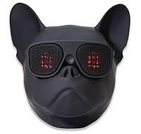 Bluetooth колонка акустика Qitech Aerobull XL LED, подсветка в глазах, сенсор движения, аккумулятор 3000 мАч