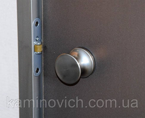 Дверь для хамама Saunax 70х210 ( матовая бронза), фото 2