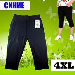 Бриджи женские с карманами Ласточка A460-706 синий 4xl/54 ЛЖЛ-3059
