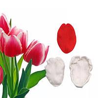 Вайнер тюльпан лепесток для реалистичных цветов, тонкая текстура