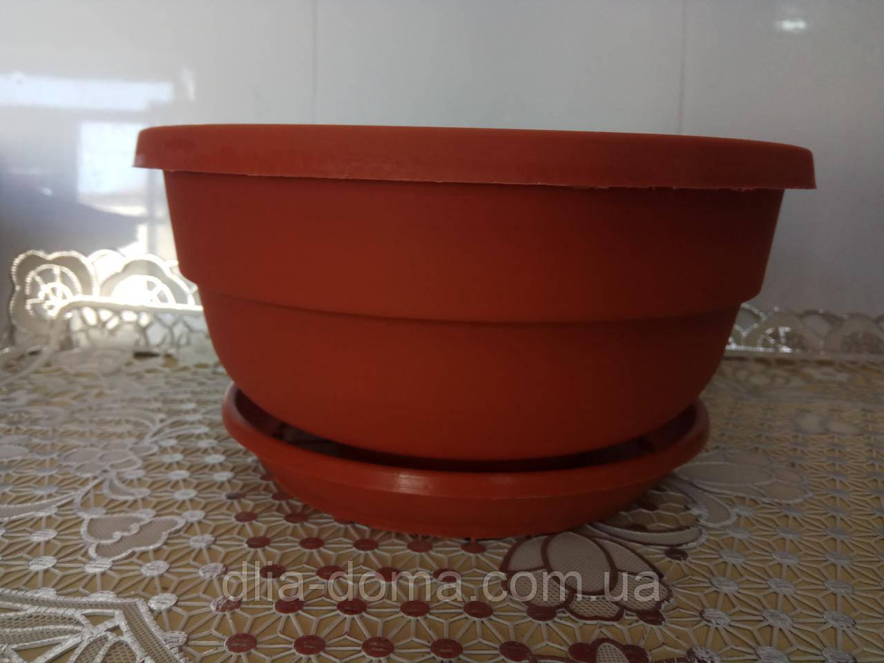 Горшок Фиалка диаметр 210 мм