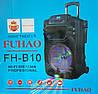 Портативная акустика FUHAO FH-B10 USB/FM/Bluetooth