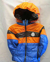 Курточка для хлопчиків весна 5991