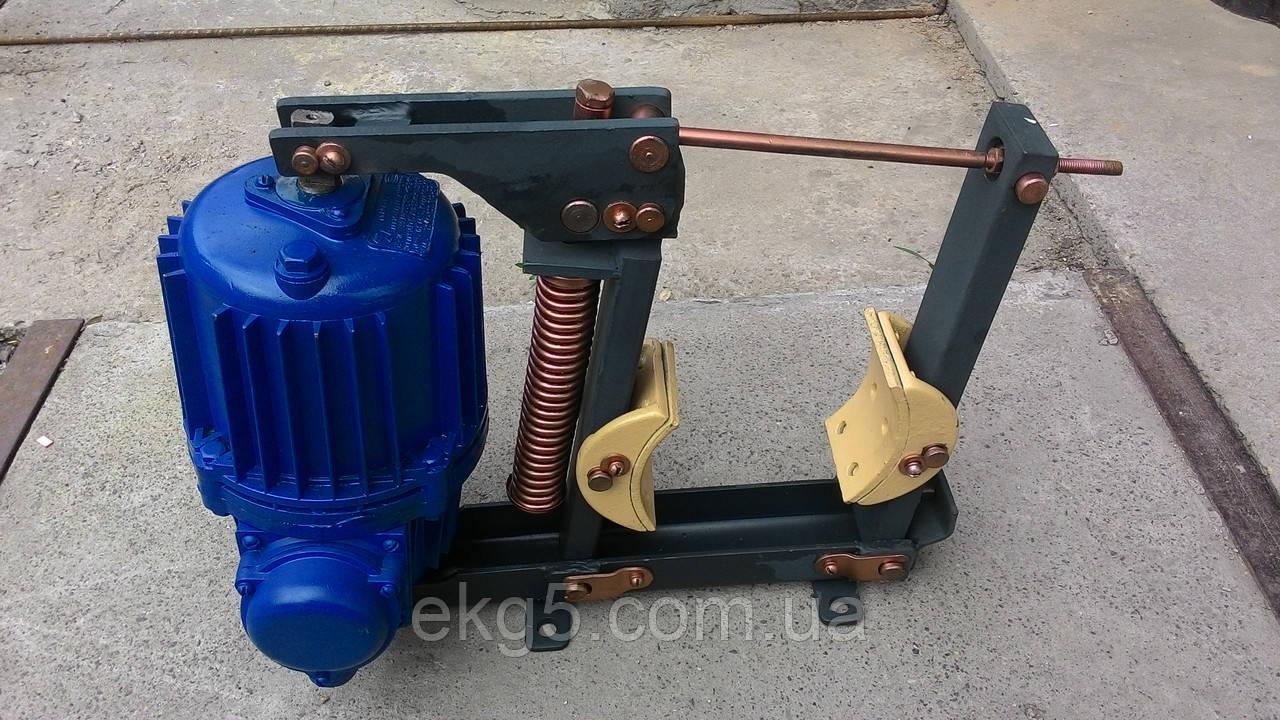 Тормоз колодочный ТКГ-160 с электрогидравлическим толкателем