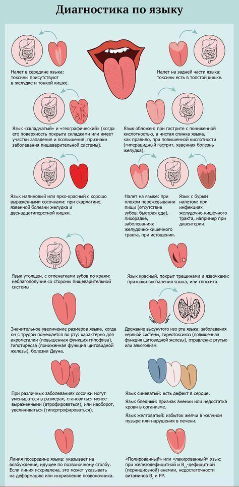 БАД НСП для лечения заболеваний ЖКТ. Картинка 2.
