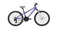 Велосипед CENTURION Bock 24 Pearl lite Purple