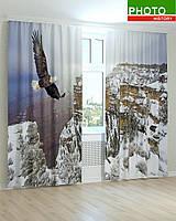 Фотошторы орел над заснеженными горами
