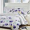 Семейный комплект постельного белья ТЕП Тюльпан
