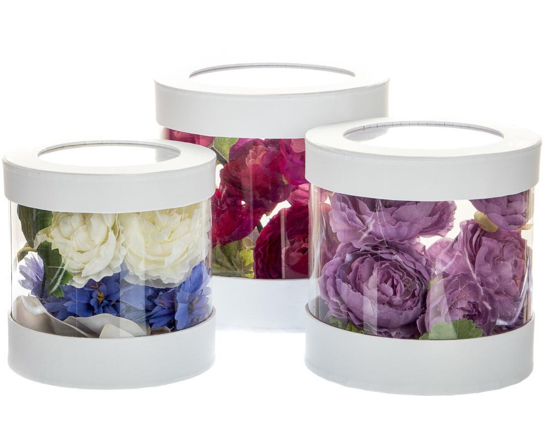 Цветок мирт как ухаживать в домашних условиях