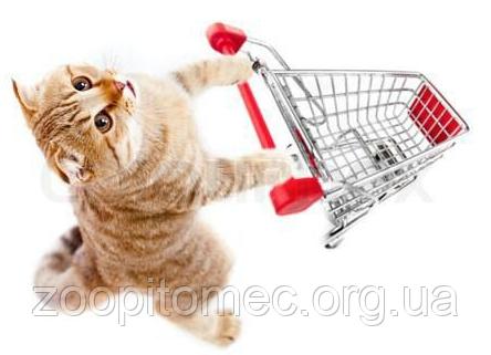 Все для кошек интернет-магазин