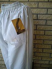 Спортивные штаны мужские реплика ADIDAS, фото 2