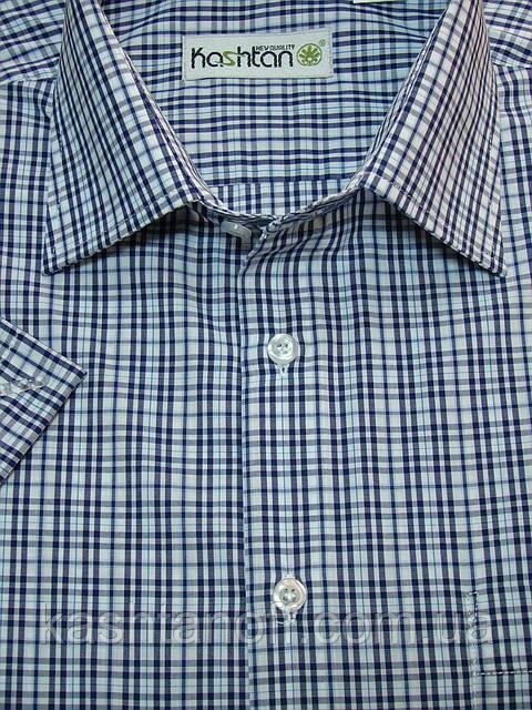 Стильная мужская рубашка в синюю клетку с коротким рукавом в клетку