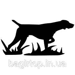 Вінілова наклейка - пес