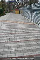 Цегла стандартна (колір на сірому цементі) 4см., фото 1