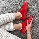 Кеды Converse All Star Женские конверс -  Red (конверсы низкие). Топ Реплика, фото 5
