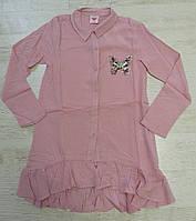Рубашка для девочек, Glo-story, 110,130,140,150,160 см,  № GCS-6197