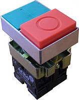 Кнопка двойная XB2-BL8425 без подсветки