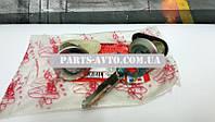 Личинки передних дверей Renault Symbol (Clio 2) (ASAM 30824)