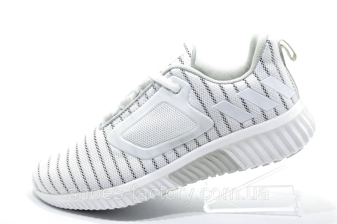 meet aa77d 67c92 Женские белые кроссовки в стиле Adidas Climacool Cm, White - Bigl.ua