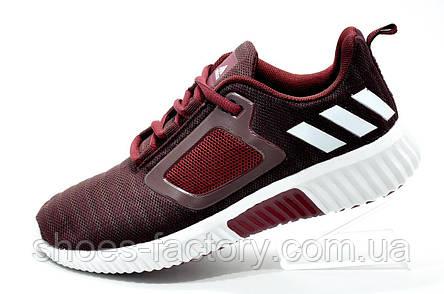 Беговые кроссовки в стиле Adidas Climacool Cm, Бордовые, фото 2