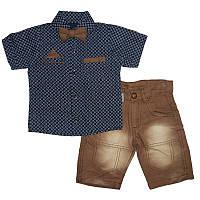 Костюм мальчик х / б + дж 1-4г. (86-104) 505 рубашка + шорты