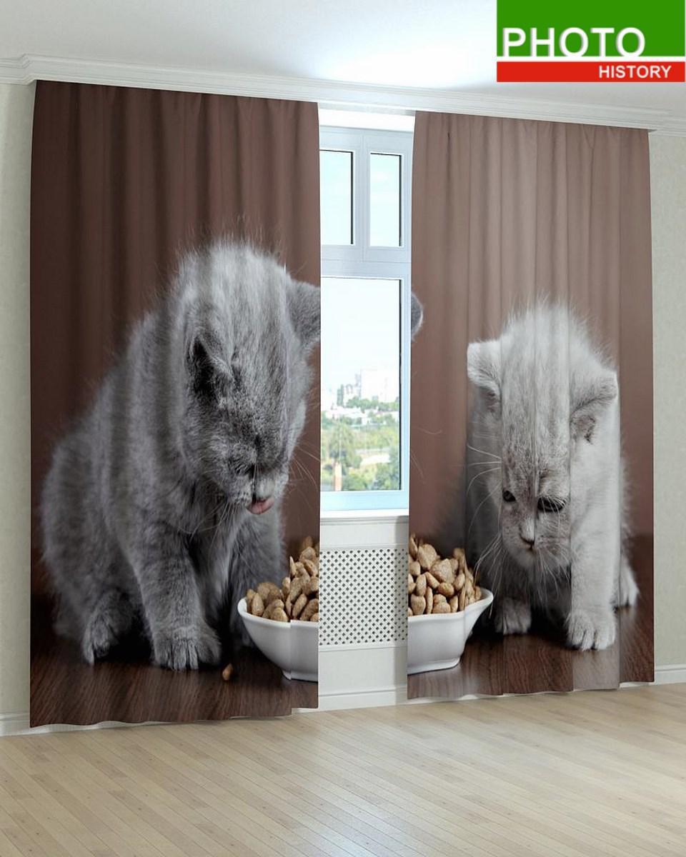 Фотошторы котята