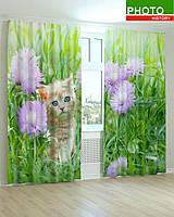 Фотошторы котенок в цветах