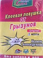 Клейова пастка від гризунів велика