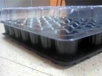 Кассета для рассады ПАРНИЧОК 33 ячейки (мини тепличка), фото 1