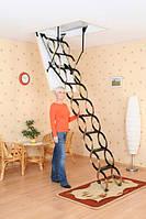 Чердачная лестница Oman NOZYCOWE NT, фото 1