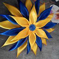 Цветок-резинка, сине-желтая