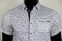 Рубашка мужская ANG 40930/40935/40936 норма/батал/супербатал
