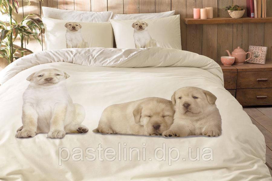 TAC Двоспальне євро постільна білизна Dogs / простирадло на гумці