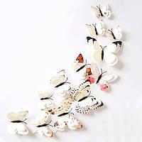 Набор №1 из 12 шт декоративных 3-D бабочек с двойными крылышками