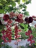 Квіткова гірлянда тон кольору марсала., фото 4