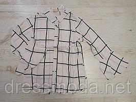 Рубашки для девочек Glo-Story 110-160 p.p.