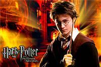 "Картинка вафельная А4 ""Гарри Поттер 2"""