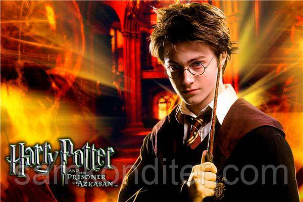 """Купить Картинка вафельная А4 """"Гарри Поттер 2"""" по лучшей ..."""