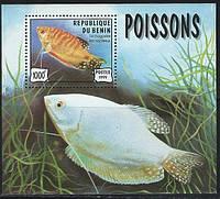 Бенин - блок рыбки 1999