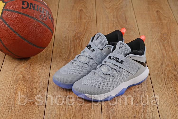 Мужские баскетбольные кроссовки Nike LeBron Soldier 10 Low (Gray)