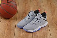 Мужские баскетбольные кроссовки Nike LeBron Soldier 10 Low (Gray), фото 1
